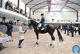 Ukrainian Dressage Championshp for Children, Juniors and Young Riders